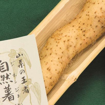 自然薯イメージ